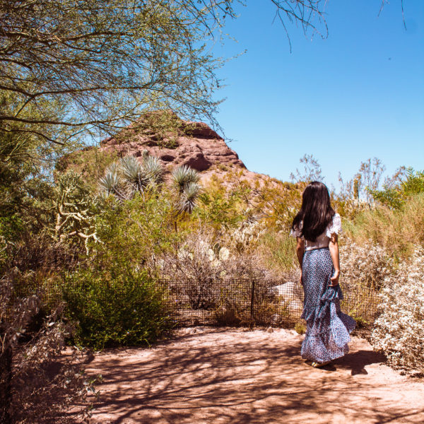 Where I've Been in Scottsdale, AZ: Travel Photo Diary